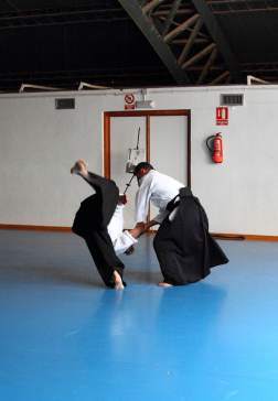 Aikido Aikikai San Vicente - Alicante - Curso Roberto Sánchez - 2013 jun - 136