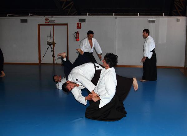 Aikido Aikikai San Vicente - Alicante - Curso Roberto Sánchez - 2013 jun - 180