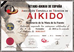 Aikido Aetaiki - Aikikai de España - Octavio de la Mata - Rokudan
