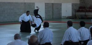 Curso Nacional de Aikido en Alicante, Tomás Sánchez y Roberto Sánchez, noviembre 2015 (Kokyu Tomás Sánchez) (rec)